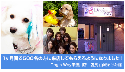 banner02_dogs-way